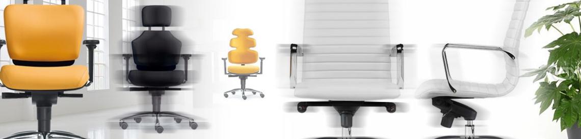 Gesund-Sitzen-Dresden - zu unseren Chefsesseln